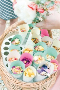 copy-of-petal-confetti-jd-low-res