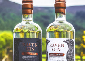 Win a bottle of exclusive Raven Gin